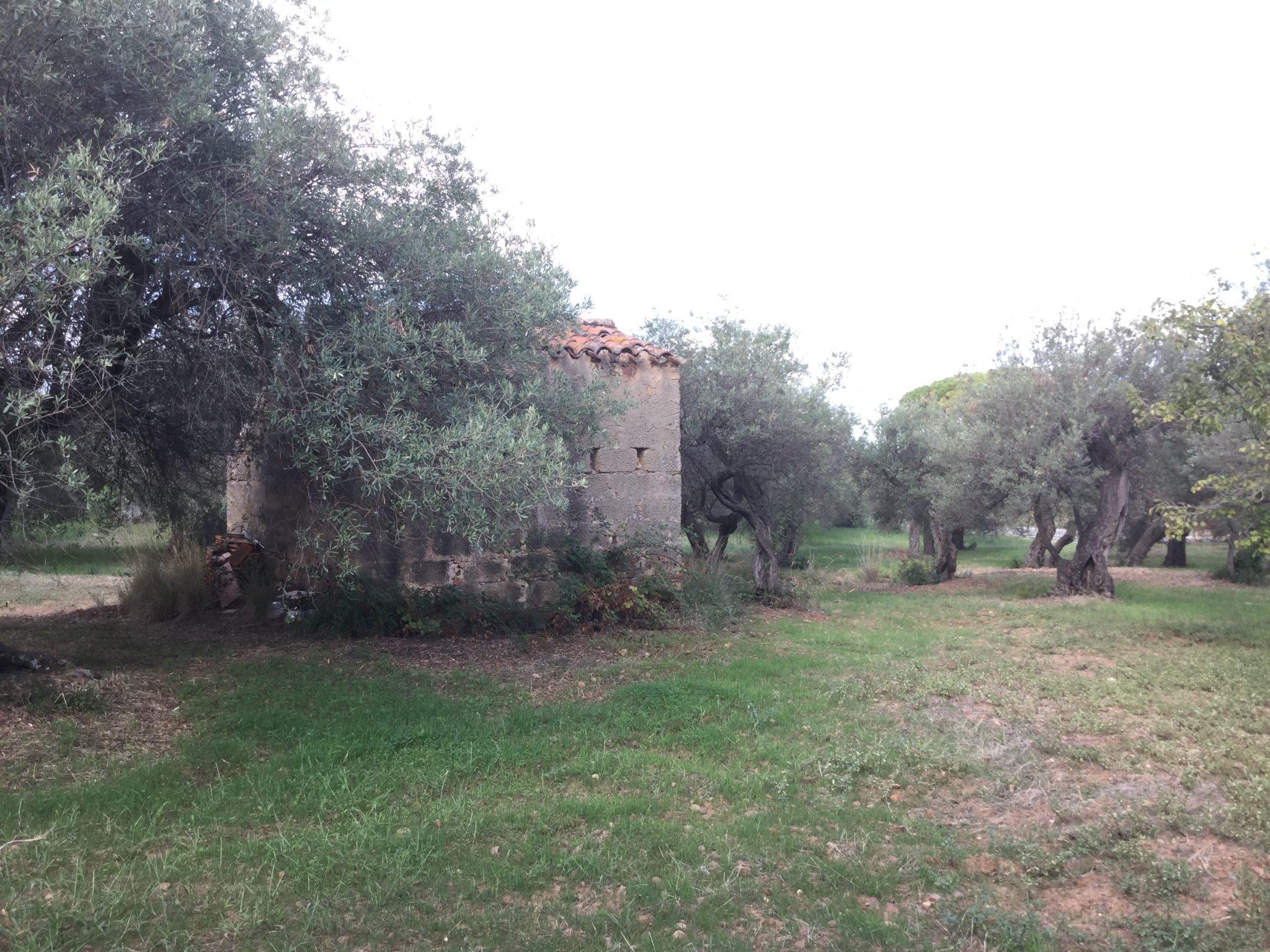 068  - Rustico con terreno , c/da Capo Plaia , Cefalù.